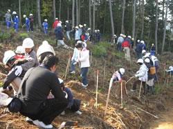 植樹イベントの様子2
